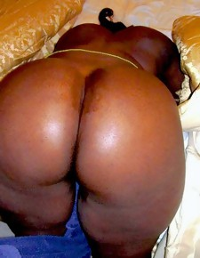 There's itsy-bitsy skinny white girls here, unequalled gorgeous black beauties with deliciously all over booties